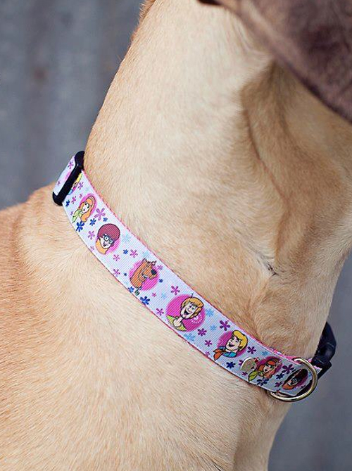 Big Stinky Dog Collars